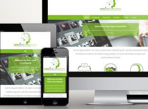 New View Consultants - Responsive Showcase